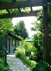 the path leading to the back door.