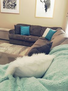 Super comfortable couch with feather pillows