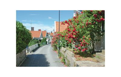 Photo for 1 bedroom accommodation in Lysekil