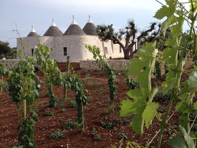 Photo for Black Horse 2 - Trulli in the vineyard