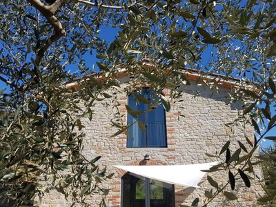 Photo for The panoramic barn in the La Cavallina olive grove
