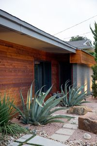 Cedar inserts and arid succulents bring Jill back to her Phoenix roots.