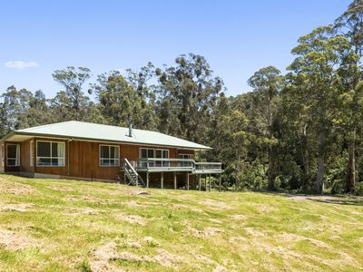 Photo for A LITTLE TOUCH OF PARADISE - STUNNING OTWAY SETTING