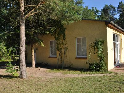 Photo for Apartment Warthe UCK 595 - UCK 595