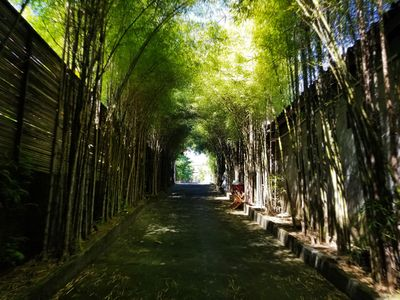 Photo for Kampoeng Bamboo w/Private Pool 50Mbps Internet