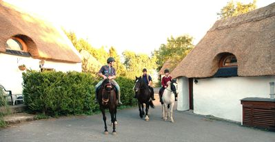Photo for Thatched 4 person cottage