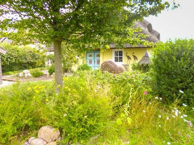 Photo for 5 star thatched house with carport on 40th 000 sqm waterfront land,