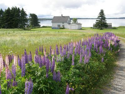 Photo for The Best Rental for Your Money in Lubec, Maine