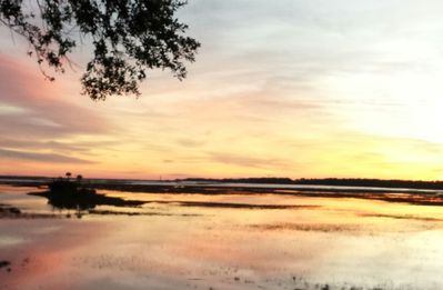 Photo for Stunning Marsh Views of Clark Sound!