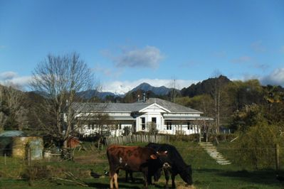 The house with Mount Arthur in the background