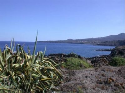 Photo for Pantelleria Dammuso by the sea for holidays