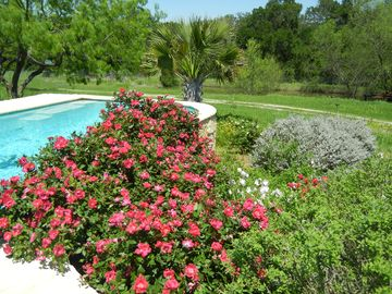 Secluded 2 Room Suite, Ranch STAYcation Bluebonnet, Polka Festival, & Races Pool