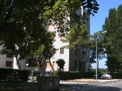Photo for 2BR Apartment Vacation Rental in Ravenna