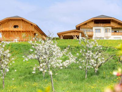 Photo for Apartment Rodererhof  in Lajen (BZ), Dolomites - 5 persons, 2 bedrooms