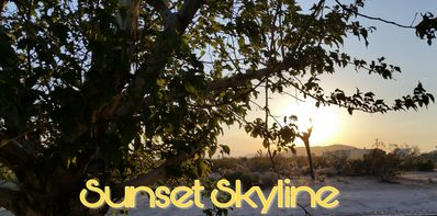 "Photo for ""Sunset Skyline"" Enjoy tranquil majestic views at this swanky Joshua Tree escape"