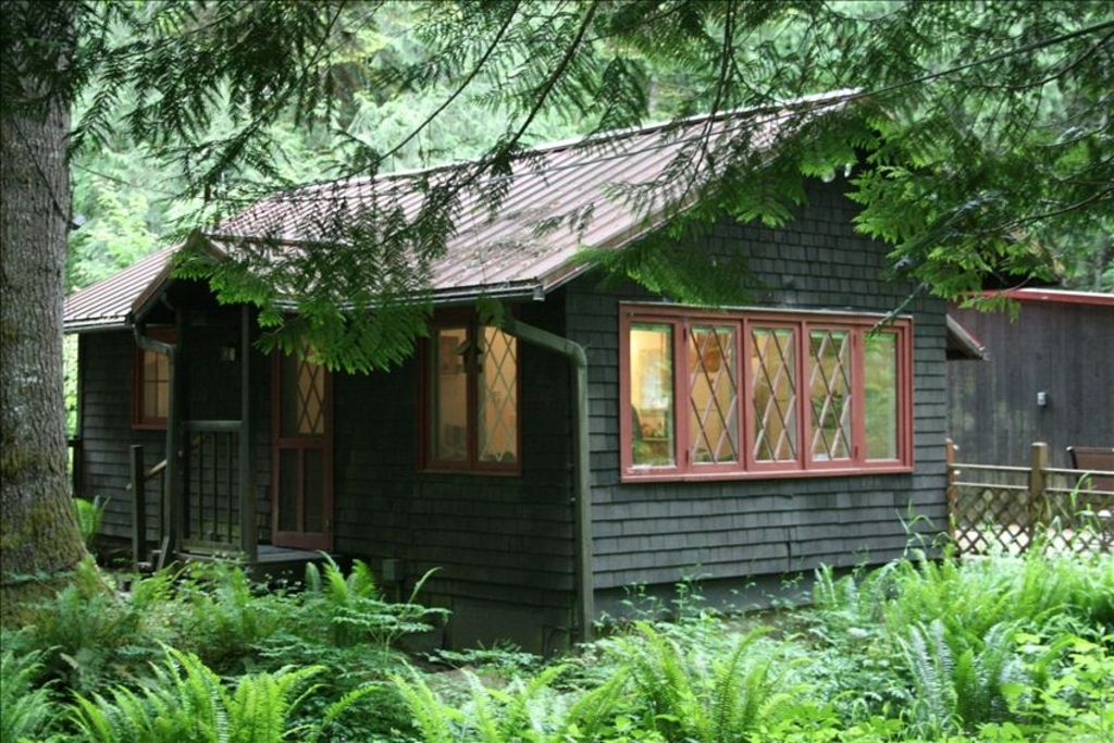 Dancing Bear Is A Quiet Cozy Cottage In The Woods With