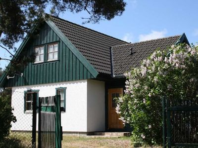 Photo for Cottage for 6 guests with 80m² in Wieck a. Darss (60538)