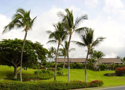 Maui Kamaole Complex carpeted in lush tropical plantings