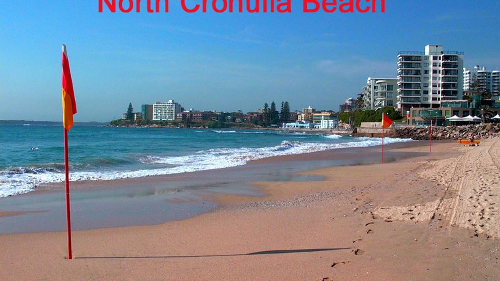 North Cronulla Beach & Surf 583