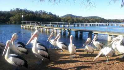 Photo for 3BR House Vacation Rental in Woy Woy, NSW