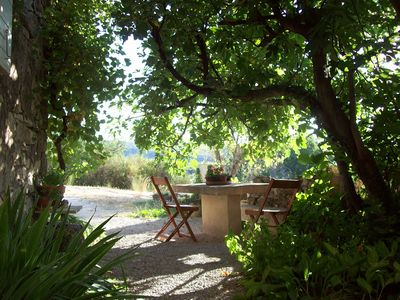 Photo for Luberon charming Rent 'Under the Fig Tree'