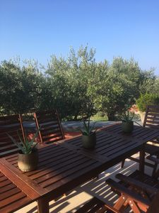 Photo for beautiful apartment Galeb newly renovated on the beach for 6 persons