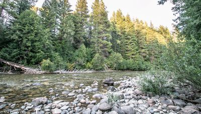 Nestled on low bank Chiwawa River front. Grab a good book and a chair and sit in the river as you breathe in the fresh mountain air.