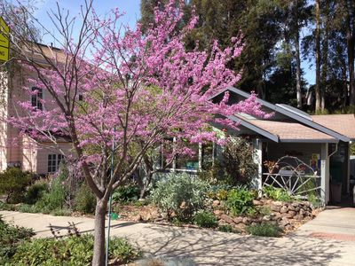 Photo for 2BR House Vacation Rental in Oakland, California