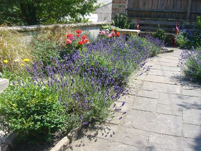 Photo for Peaceful garden annex in pretty Dorset downland village