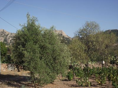 Photo for 3BR Chateau / Country House Vacation Rental in Loiri, Sardegna