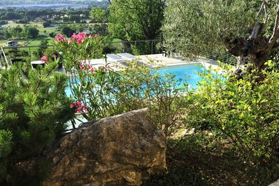 From the garden, pool view