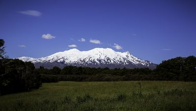 Photo for Luxury Eco Retreat set 1 Ha of private Bush in the Tongariro / Ruapehu Region