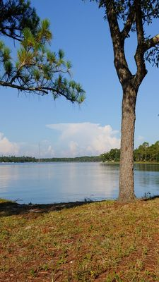 Photo for Navy Point Cottage - Pensacola