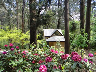 Photo for Treetops 3 Cottage @ Lochiel Accommodation