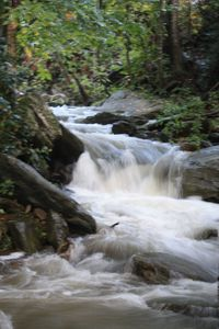 Photo for Relaxing retreat on rushing waterfall stream with views of Grandfather Mountain.