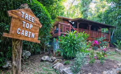 One of our cozy Belize Vacation homes for rent - Treetops Cabin.