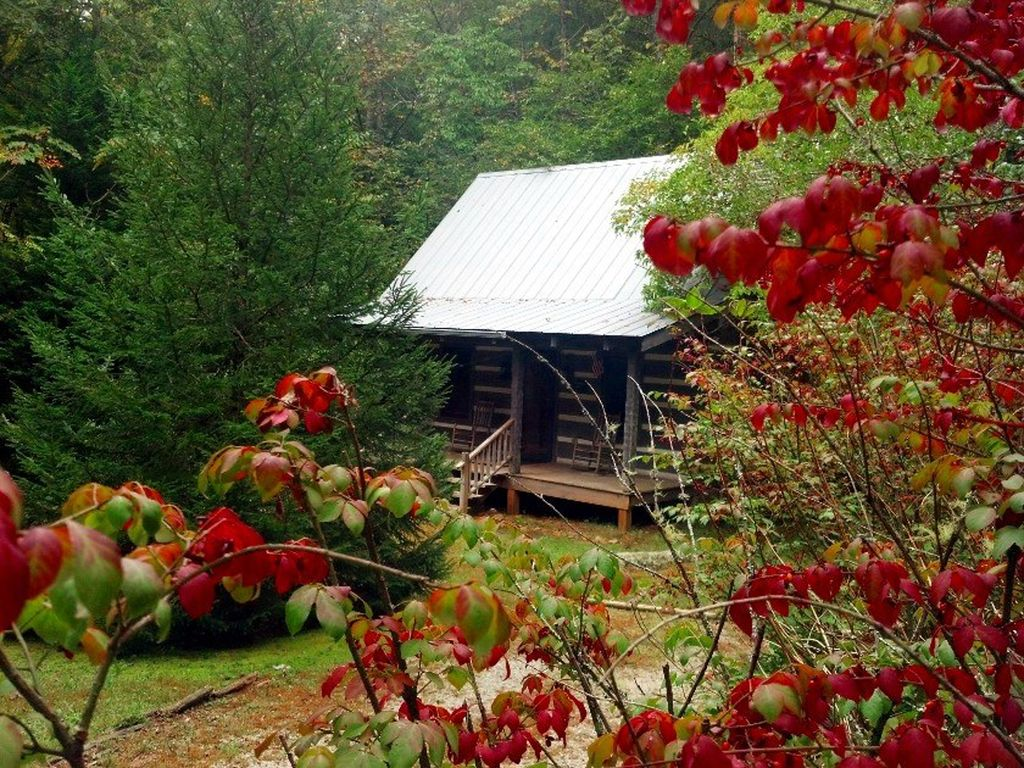 Cozy Dillard Log Cabin On A Mountain Stream Pay For 6