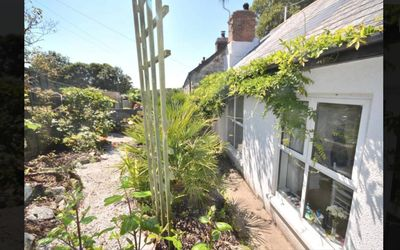 Photo for Wild Lily Cottage - Just 400m From The Beach