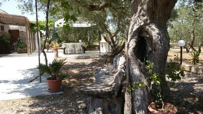 Photo for residence Uliveto, immersed in the Salento countryside just a few kilometers from the sea
