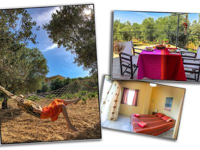 Photo for A country home amidst a lovely olive grove and luscious vineyards.