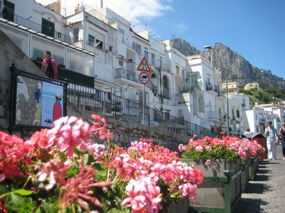Photo for Casa Dora - Typical Capri house in great marina.