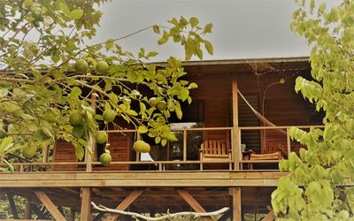 A beautiful tree top cabin with superior finishes and views