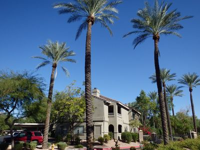 Great Rates in Desirable North Scottsdale  GolfDining ShoppingHiking  MayoClinic - North Scottsdale