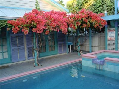 Architect's Personal Residence, Private Pool, 1 Blk. to Duval