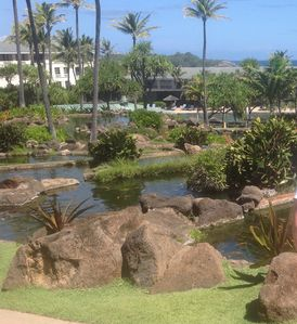 Photo for 2 Bedroom 2 Bathroom at the Point at Poipu.  Beautiful property with amenities.