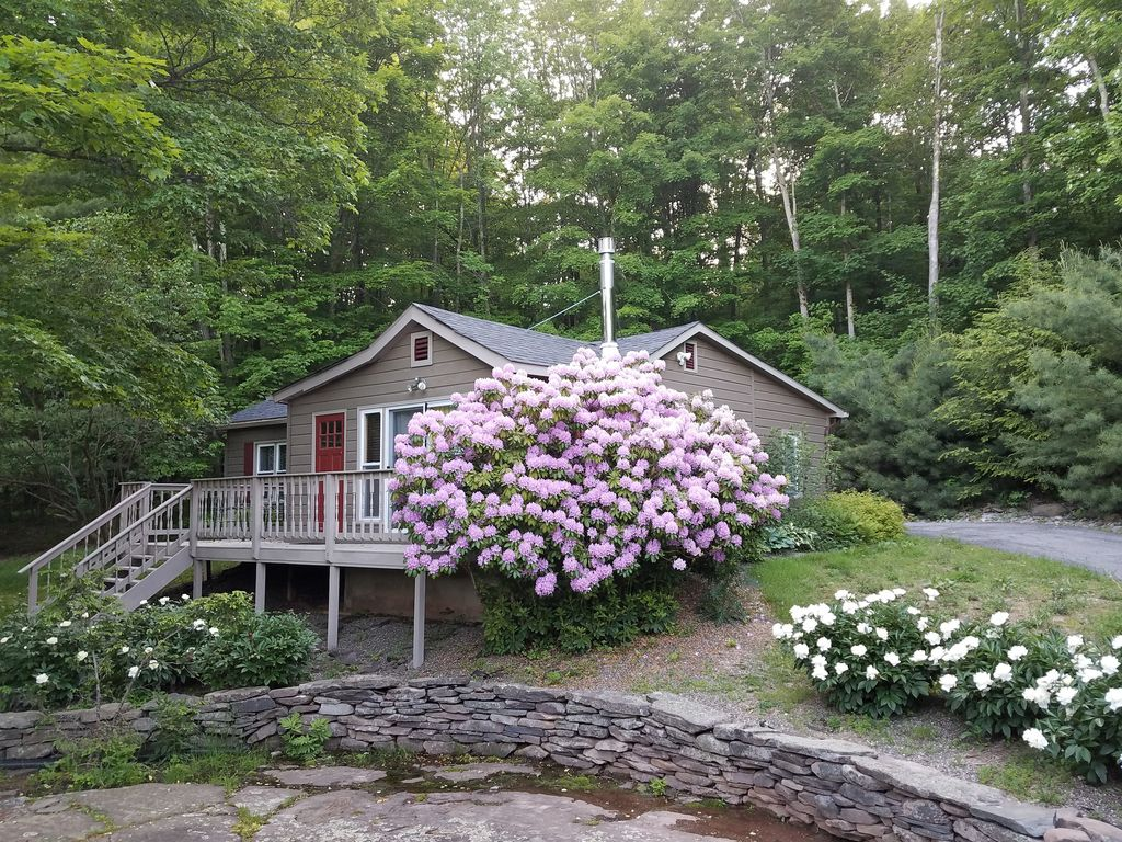 Charming star sapphire cabin with luxury hot tub near for Cabins near hunter mountain