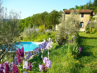 Photo for Apartment Iris in San Polo in Chianti - 4 persons, 2 bedrooms