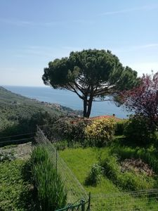 Photo for Lerici casa vacanza The arbor in the gulf