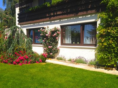 Photo for Individual living in a quiet, sunny slope of Baden-Baden (Close to City Centre)