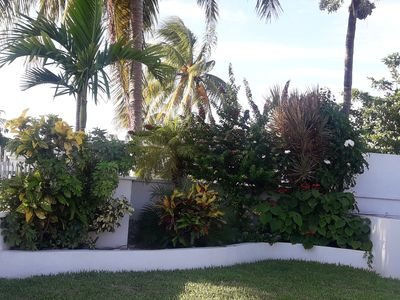 Photo for Mango Paradise - A Quiet Relaxing Place to Stay